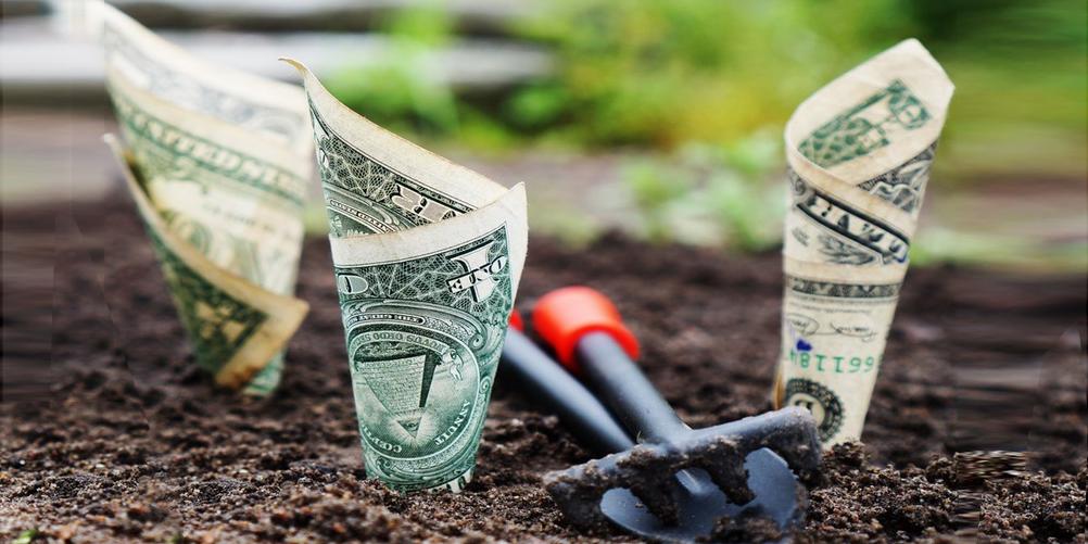 Kulturfinanzierung II - Projektbudgetierung und Sponsorenansprache